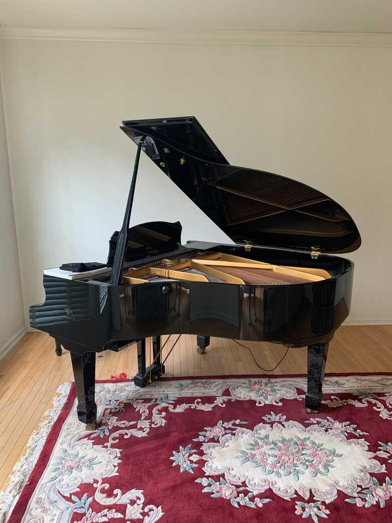 Beautiful Estonia Piano