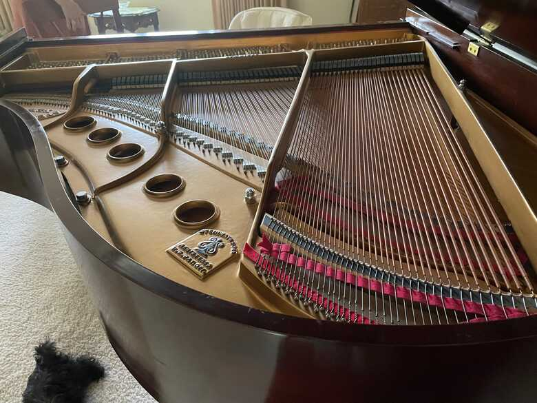 """Steinway & Sons """"S"""" Grand Piano"""