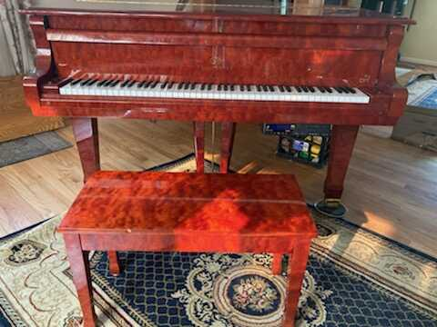 Gorgeous Grand with Symphany Pro Player