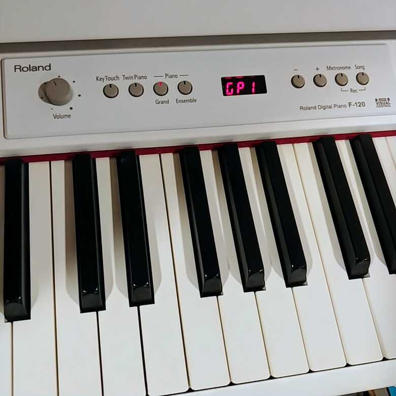 Roland F-120 in Great Condition
