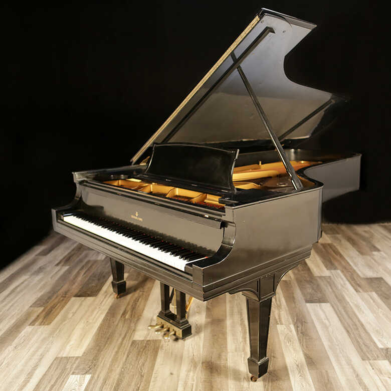 """Golden Age Steinway Grand Piano, Model D - 8'11"""""""